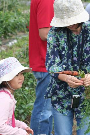 収穫体験のイメージ